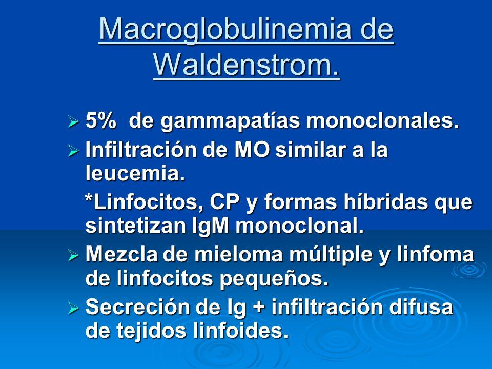 Macroglobulinemia de Waldenstrom. 5% de gammapatías monoclonales. 5% de gammapatías monoclonales. Infiltración de MO similar a la leucemia. Infiltraci