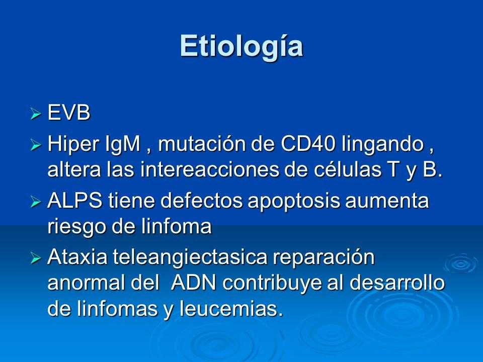Etiología EVB EVB Hiper IgM, mutación de CD40 lingando, altera las intereacciones de células T y B. Hiper IgM, mutación de CD40 lingando, altera las i