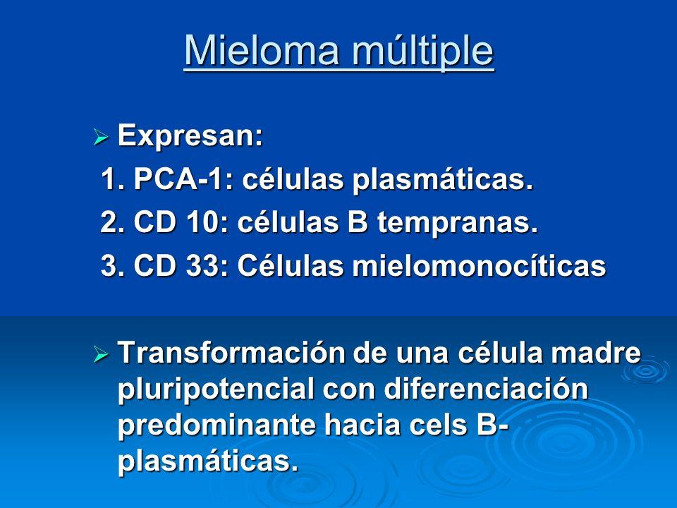 Mieloma múltiple Expresan: Expresan: 1. PCA-1: células plasmáticas. 1. PCA-1: células plasmáticas. 2. CD 10: células B tempranas. 2. CD 10: células B