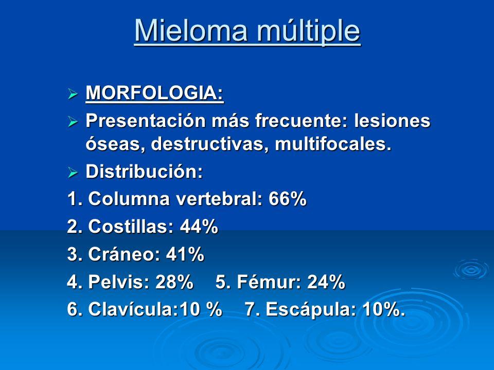 Mieloma múltiple MORFOLOGIA: MORFOLOGIA: Presentación más frecuente: lesiones óseas, destructivas, multifocales. Presentación más frecuente: lesiones