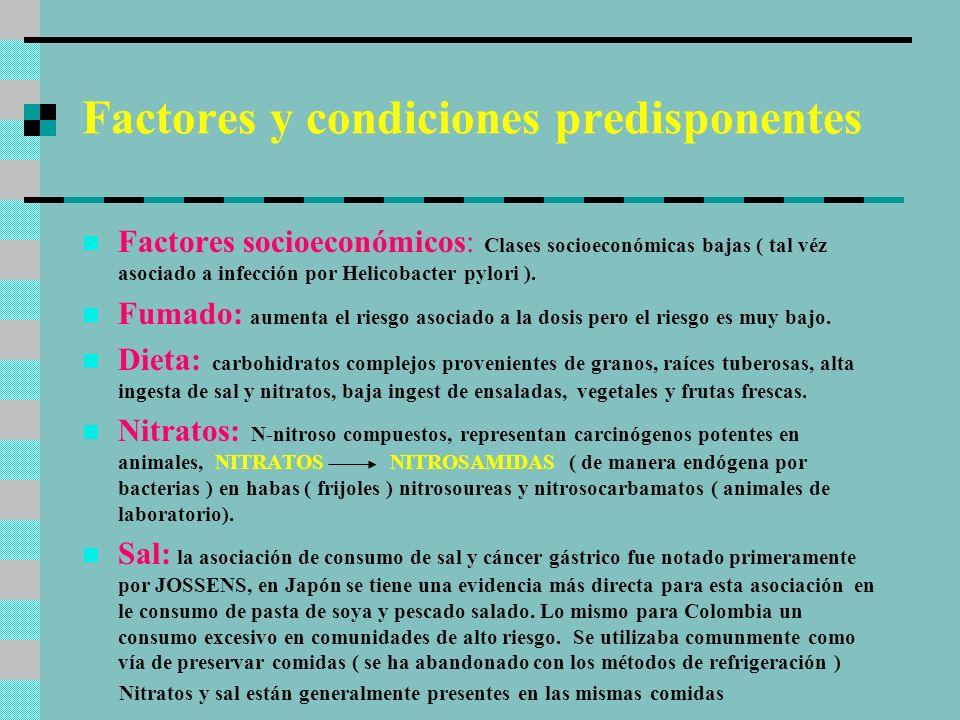 Factores y condiciones predisponentes Factores socioeconómicos: Clases socioeconómicas bajas ( tal véz asociado a infección por Helicobacter pylori ).