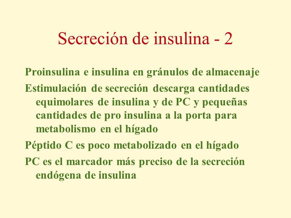 Secreción de insulina - 2 Proinsulina e insulina en gránulos de almacenaje Estimulación de secreción descarga cantidades equimolares de insulina y de