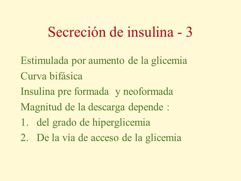 Secreción de insulina - 3 Estimulada por aumento de la glicemia Curva bifásica Insulina pre formada y neoformada Magnitud de la descarga depende : 1.d