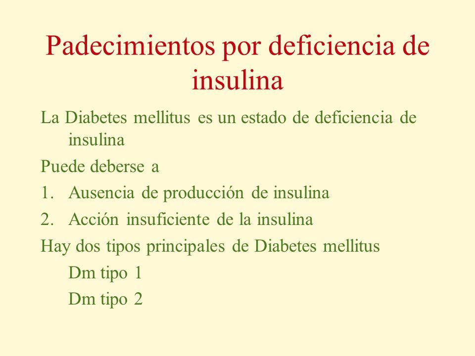 Padecimientos por deficiencia de insulina La Diabetes mellitus es un estado de deficiencia de insulina Puede deberse a 1.Ausencia de producción de ins