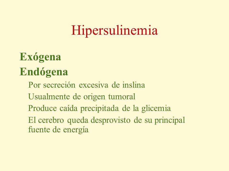 Hipersulinemia Exógena Endógena Por secreción excesiva de inslina Usualmente de origen tumoral Produce caída precipitada de la glicemia El cerebro que