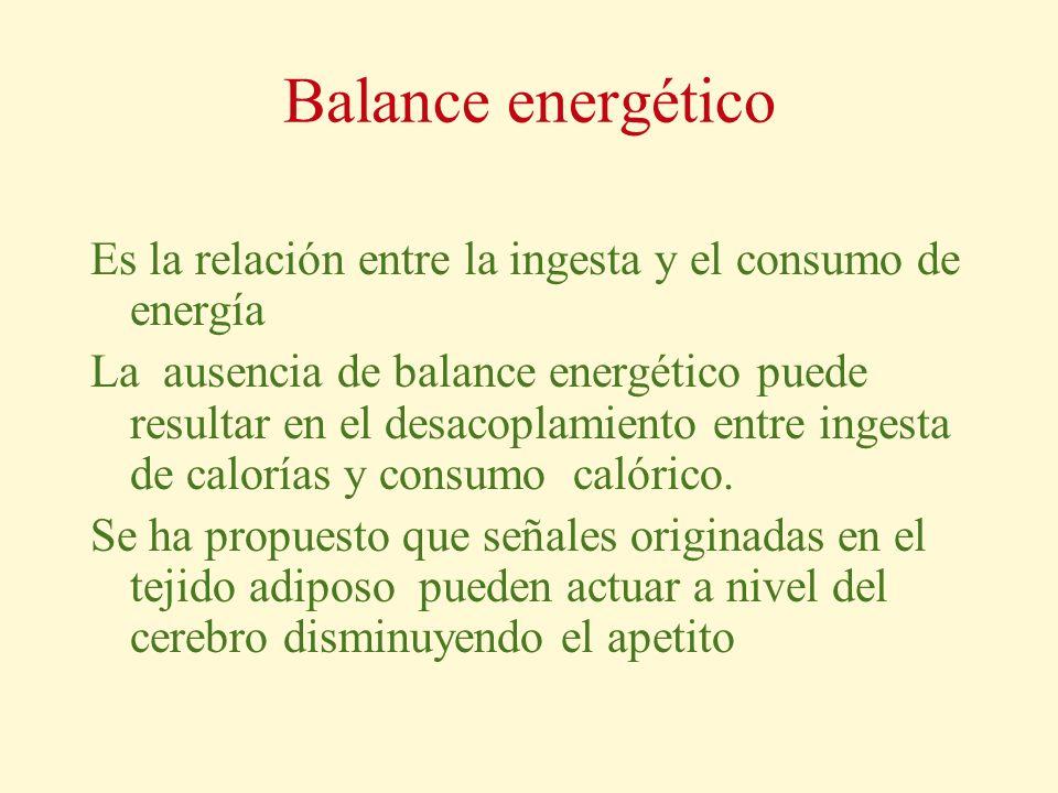 Balance energético Es la relación entre la ingesta y el consumo de energía La ausencia de balance energético puede resultar en el desacoplamiento entr