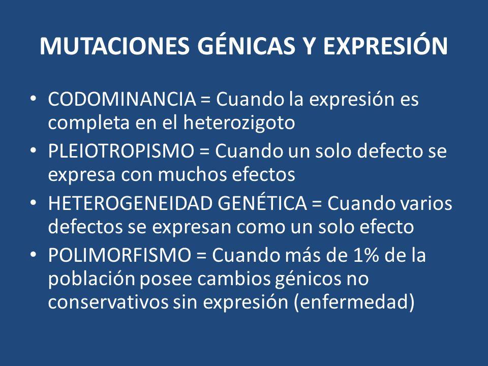 MUTACIONES GÉNICAS Y EXPRESIÓN CODOMINANCIA = Cuando la expresión es completa en el heterozigoto PLEIOTROPISMO = Cuando un solo defecto se expresa con