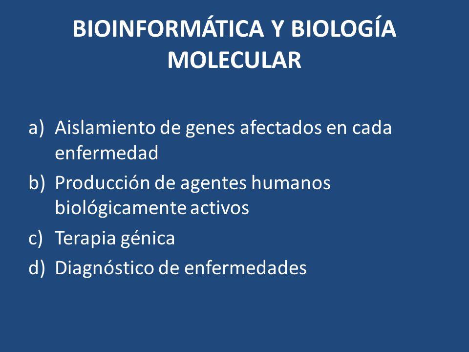 BIOINFORMÁTICA Y BIOLOGÍA MOLECULAR a)Aislamiento de genes afectados en cada enfermedad b)Producción de agentes humanos biológicamente activos c)Terap