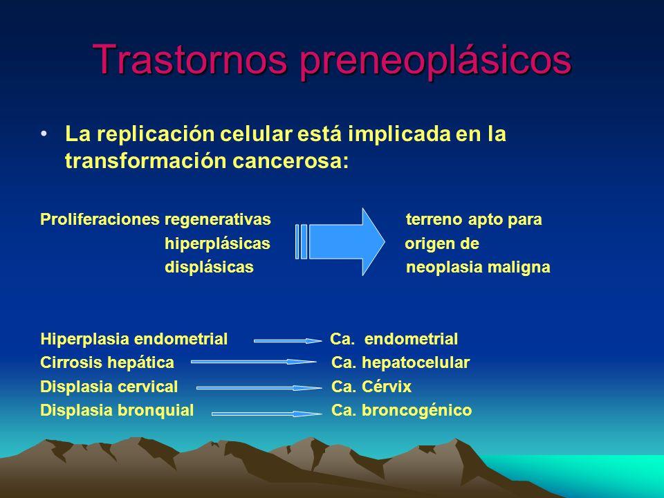 Trastornos preneoplásicos La replicación celular está implicada en la transformación cancerosa: Proliferaciones regenerativas terreno apto para hiperp