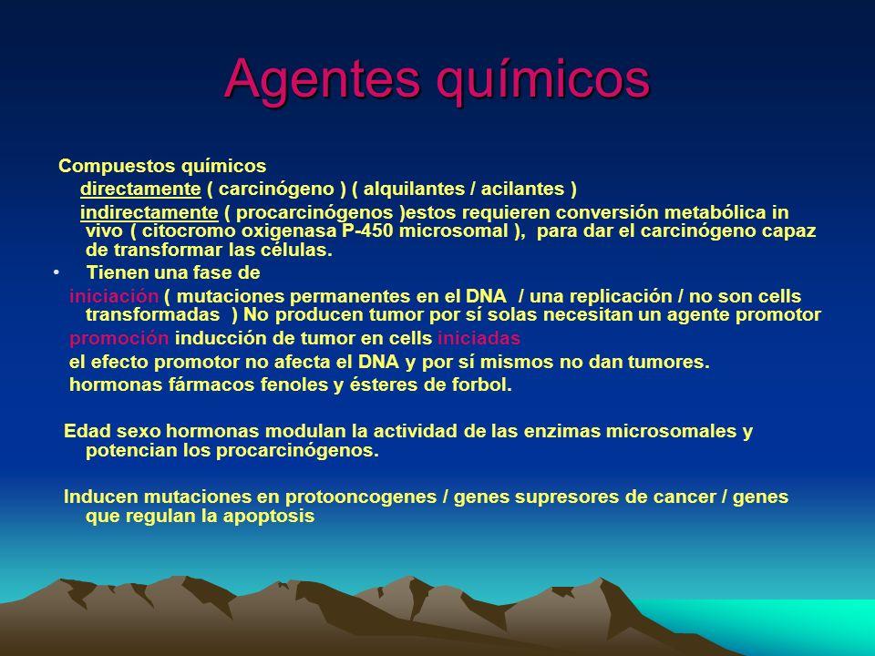 Agentes químicos Compuestos químicos directamente ( carcinógeno ) ( alquilantes / acilantes ) indirectamente ( procarcinógenos )estos requieren conver