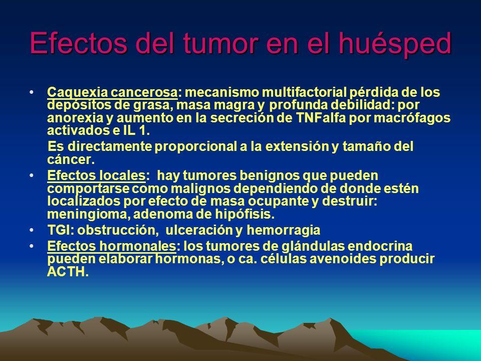 Efectos del tumor en el huésped Caquexia cancerosa: mecanismo multifactorial pérdida de los depósitos de grasa, masa magra y profunda debilidad: por a