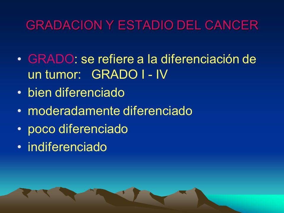 GRADACION Y ESTADIO DEL CANCER GRADO: se refiere a la diferenciación de un tumor: GRADO I - IV bien diferenciado moderadamente diferenciado poco difer