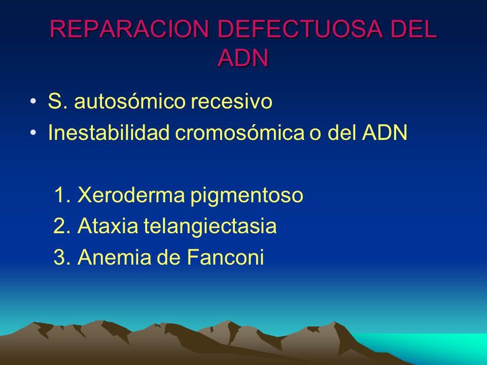 REPARACION DEFECTUOSA DEL ADN S. autosómico recesivo Inestabilidad cromosómica o del ADN 1. Xeroderma pigmentoso 2. Ataxia telangiectasia 3. Anemia de