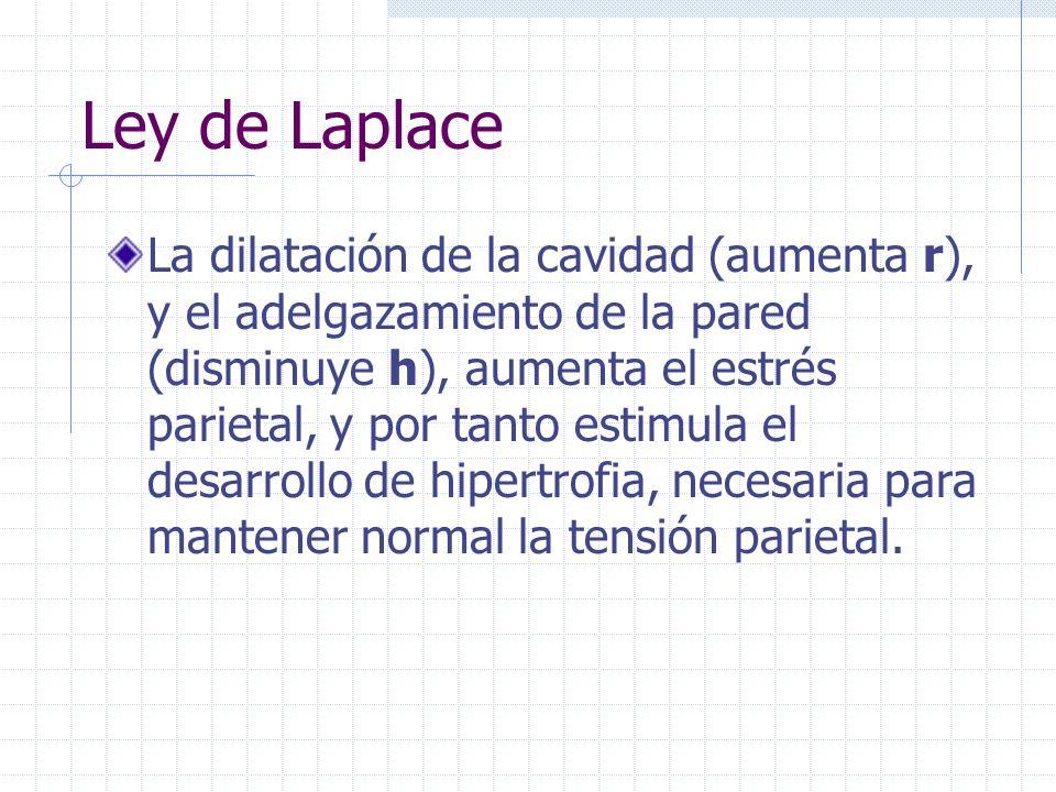 Ley de Laplace La tensión de la pared es uno de los aspectos determinantes principales de la captación miocárdica de O 2. La reducción de la poscarga