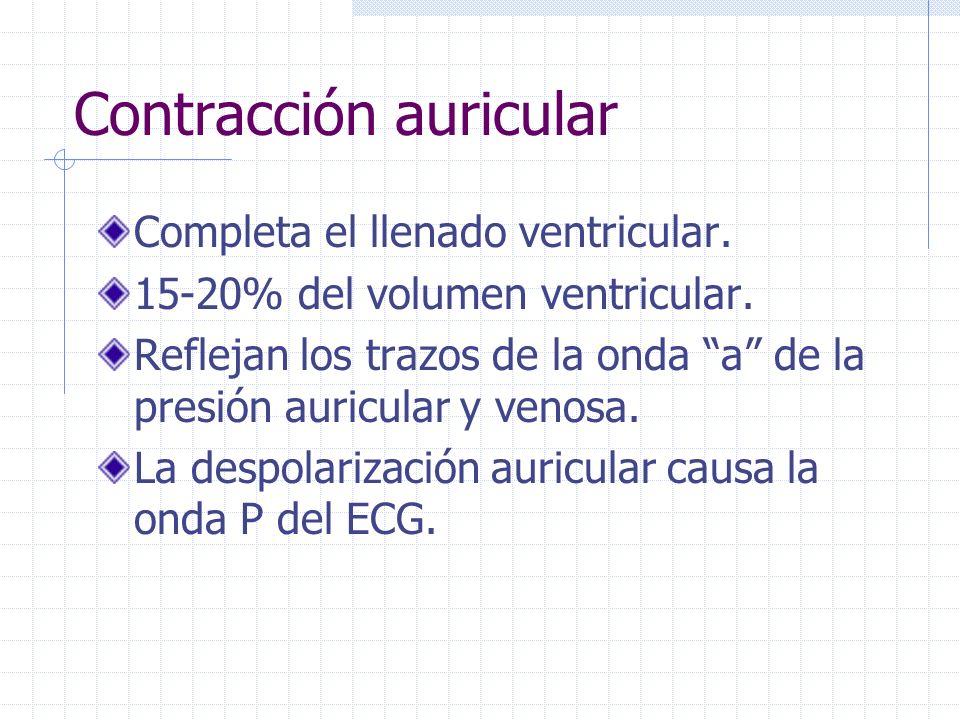 CICLO CARDIACO Sístole: Contracción atrial Contracción isovolumétrica Eyección ventricular rápida Eyección ventricular lenta Diástole: Relajación isov