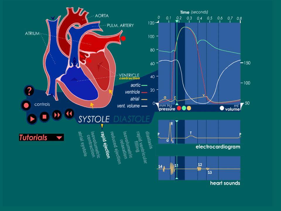 Fase De Expulsión Rápida Fase de expulsión rápida: cuando la presión en el VI exceda la presión de la válvula aórtica. La presión del ventrículo izqui