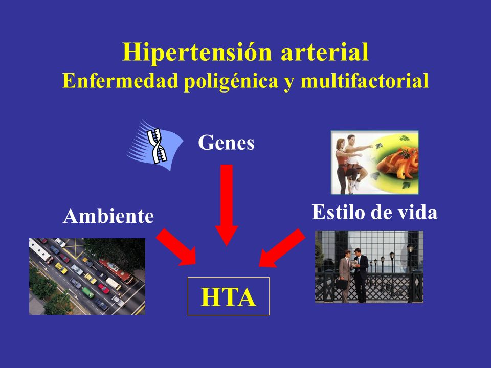 Hipertensión arterial Enfermedad poligénica y multifactorial Genes Estilo de vida Ambiente HTA