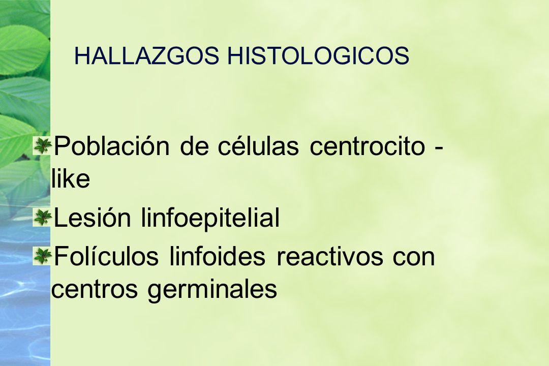 HALLAZGOS HISTOLOGICOS Población de células centrocito - like Lesión linfoepitelial Folículos linfoides reactivos con centros germinales