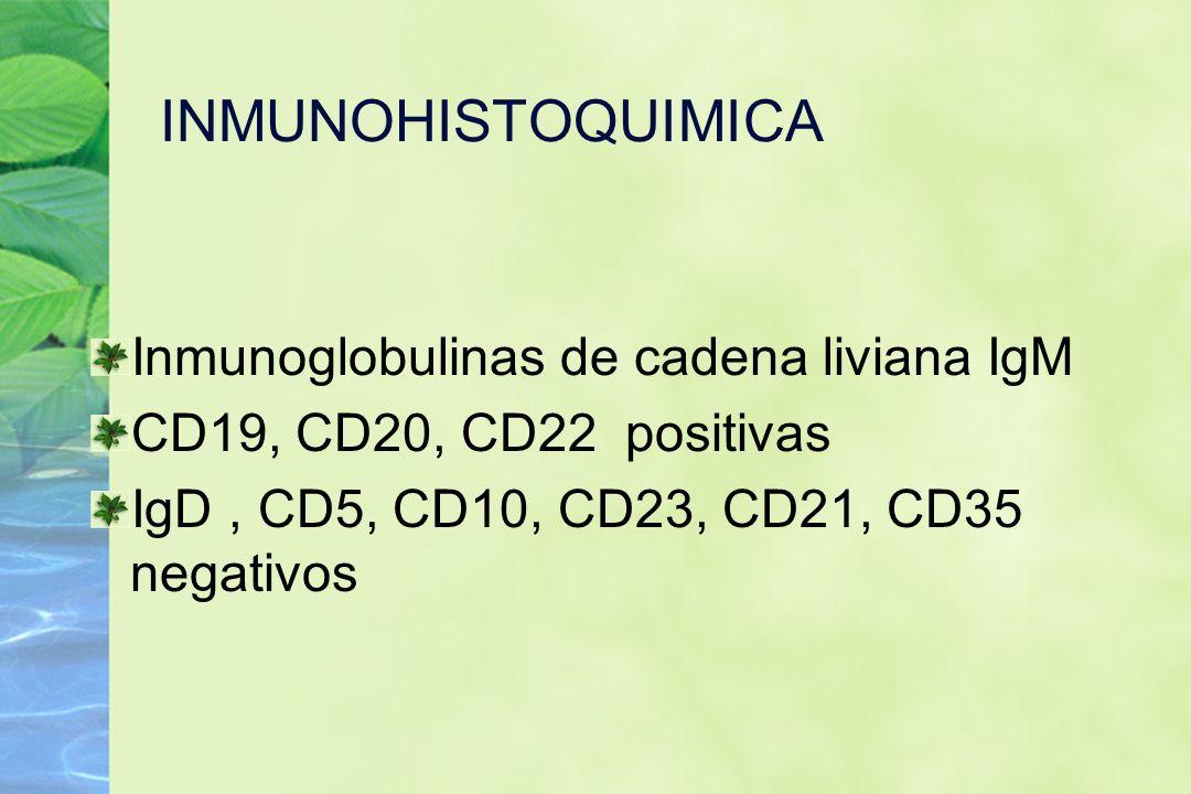 INMUNOHISTOQUIMICA Inmunoglobulinas de cadena liviana IgM CD19, CD20, CD22 positivas IgD, CD5, CD10, CD23, CD21, CD35 negativos