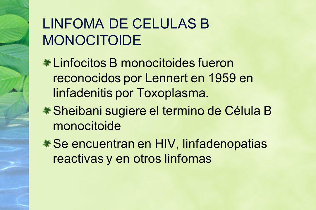 LINFOMA DE CELULAS B MONOCITOIDE Linfocitos B monocitoides fueron reconocidos por Lennert en 1959 en linfadenitis por Toxoplasma. Sheibani sugiere el