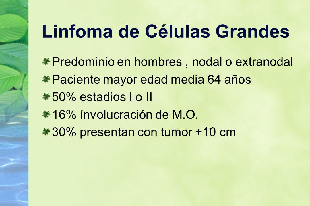 Linfoma de Células Grandes Predominio en hombres, nodal o extranodal Paciente mayor edad media 64 años 50% estadios I o II 16% ínvolucración de M.O. 3