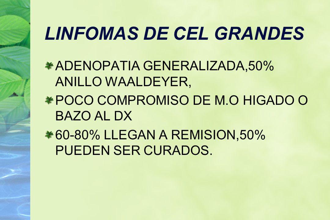 LINFOMAS DE CEL GRANDES ADENOPATIA GENERALIZADA,50% ANILLO WAALDEYER, POCO COMPROMISO DE M.O HIGADO O BAZO AL DX 60-80% LLEGAN A REMISION,50% PUEDEN S