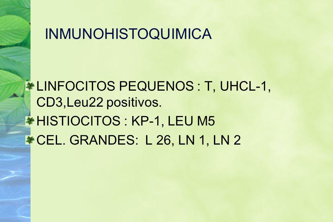 INMUNOHISTOQUIMICA LINFOCITOS PEQUENOS : T, UHCL-1, CD3,Leu22 positivos. HISTIOCITOS : KP-1, LEU M5 CEL. GRANDES: L 26, LN 1, LN 2