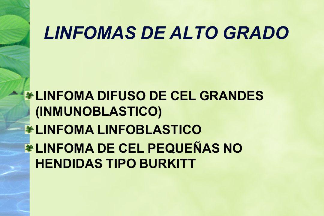 LINFOMA DE CEL GRANDES CEL 4-5 VECES MAYOR QUE LINFOCITO MADURO,ABUNDANTE CITOPLASMA,NUCLEO GRANDE CON 1-2 NUCLEOLOS N° MITOSIS ES ALTO 40-50% LNH CD19,CD20 +, Sig.