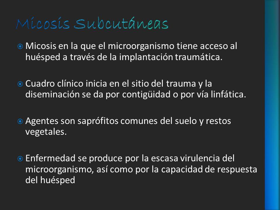 Micosis en la que el microorganismo tiene acceso al huésped a través de la implantación traumática. Cuadro clínico inicia en el sitio del trauma y la