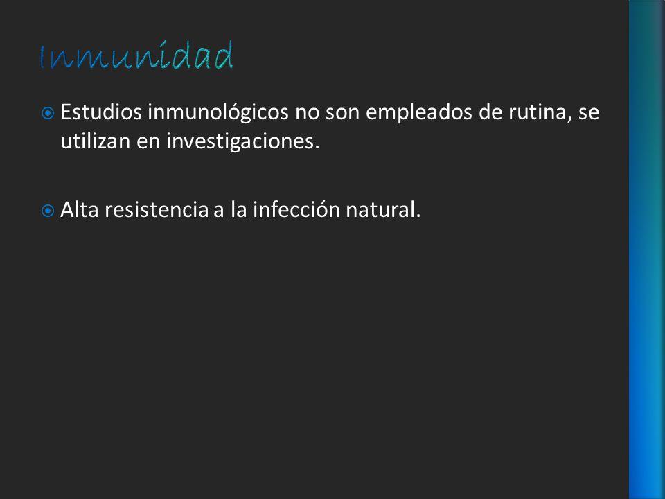 Estudios inmunológicos no son empleados de rutina, se utilizan en investigaciones. Alta resistencia a la infección natural.