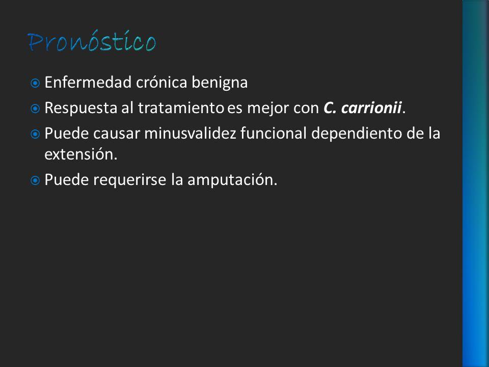 Enfermedad crónica benigna Respuesta al tratamiento es mejor con C. carrionii. Puede causar minusvalidez funcional dependiento de la extensión. Puede