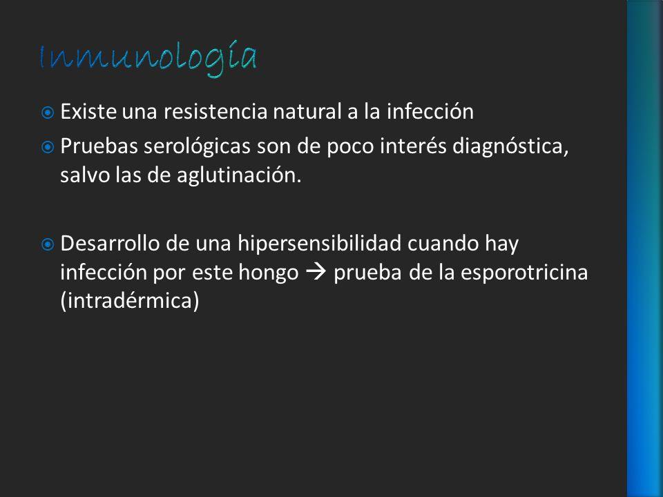 Existe una resistencia natural a la infección Pruebas serológicas son de poco interés diagnóstica, salvo las de aglutinación. Desarrollo de una hipers