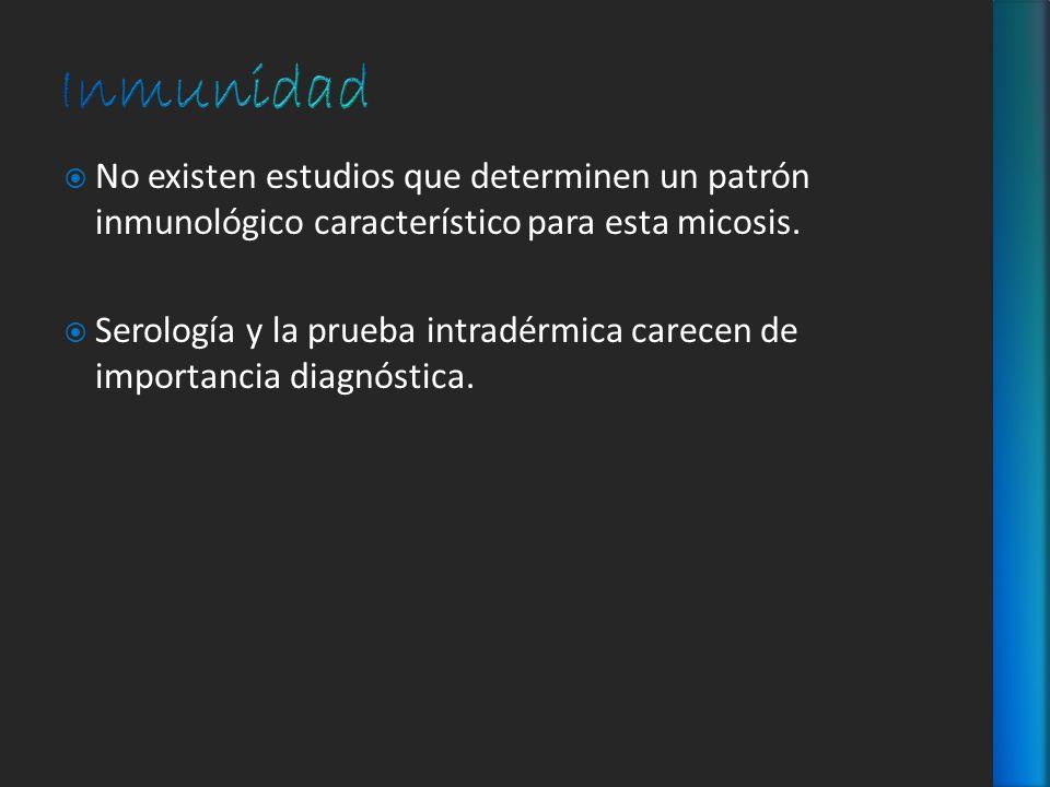 No existen estudios que determinen un patrón inmunológico característico para esta micosis. Serología y la prueba intradérmica carecen de importancia