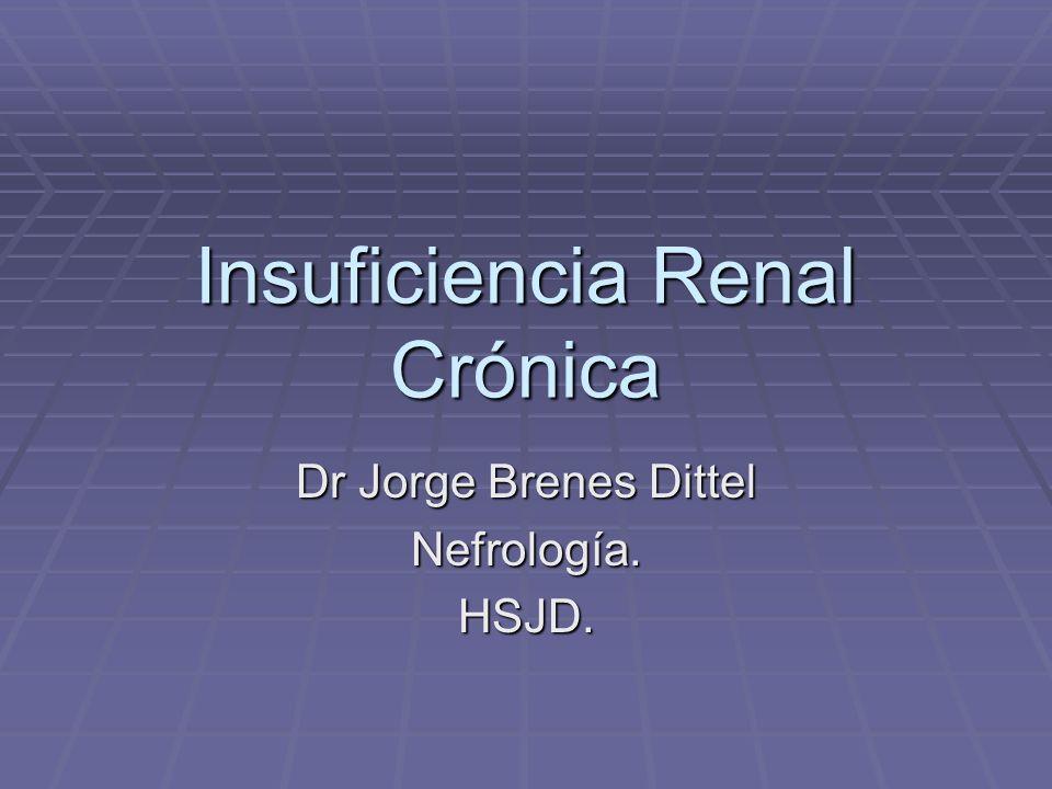 IRC Es la evolución natural de muchas nefropatías crónicas.