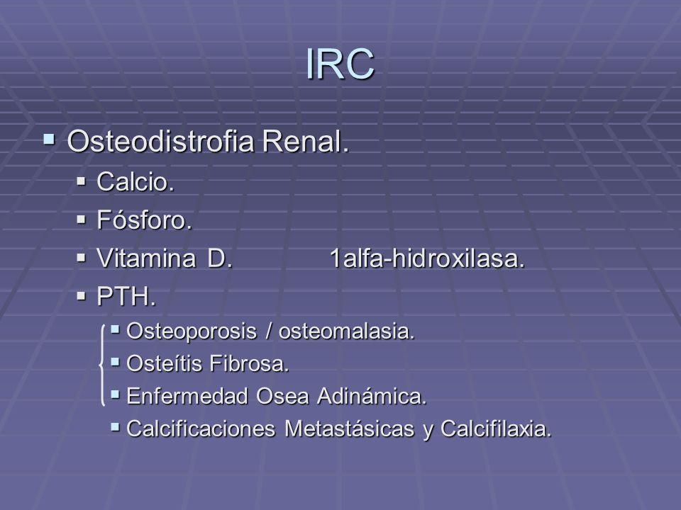 IRC Osteodistrofia Renal. Osteodistrofia Renal. Calcio. Calcio. Fósforo. Fósforo. Vitamina D. 1alfa-hidroxilasa. Vitamina D. 1alfa-hidroxilasa. PTH. P