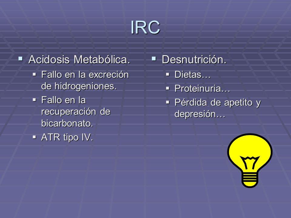 IRC Acidosis Metabólica. Acidosis Metabólica. Fallo en la excreción de hidrogeniones. Fallo en la excreción de hidrogeniones. Fallo en la recuperación