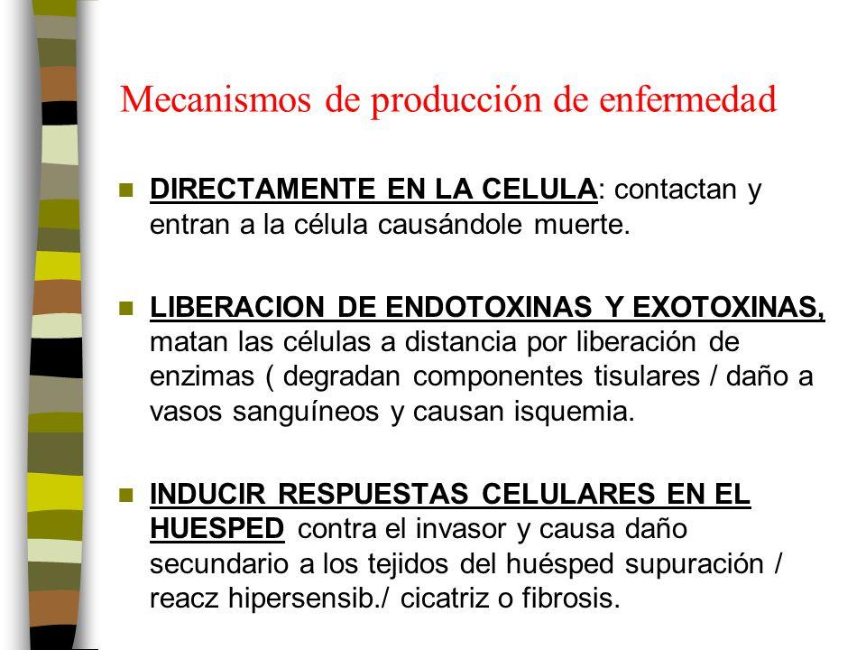 Mecanismos de producción de enfermedad DIRECTAMENTE EN LA CELULA: contactan y entran a la célula causándole muerte.