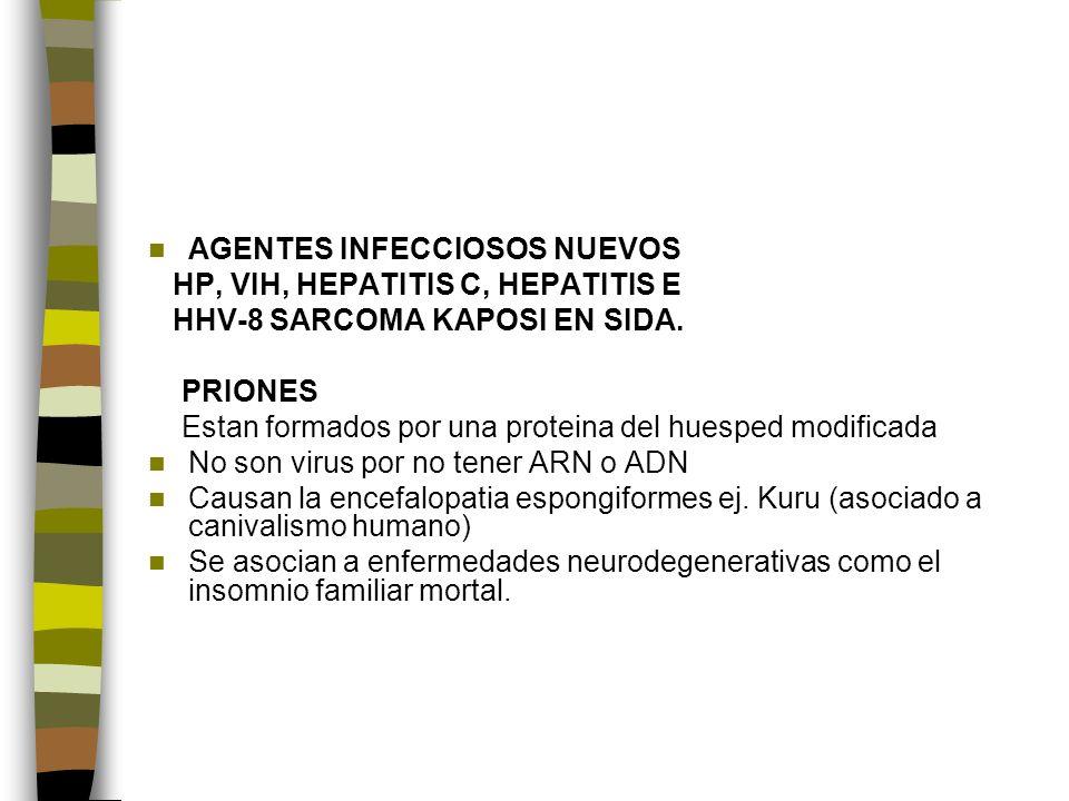 AGENTES INFECCIOSOS NUEVOS HP, VIH, HEPATITIS C, HEPATITIS E HHV-8 SARCOMA KAPOSI EN SIDA.