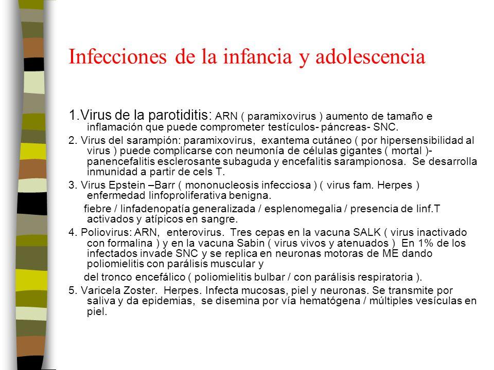 Infecciones de la infancia y adolescencia 1.Virus de la parotiditis: ARN ( paramixovirus ) aumento de tamaño e inflamación que puede comprometer testículos- páncreas- SNC.