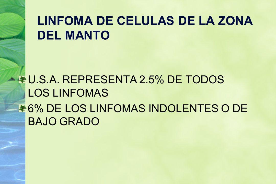 LINFOMA DE CELULAS DE LA ZONA DEL MANTO U.S.A. REPRESENTA 2.5% DE TODOS LOS LINFOMAS 6% DE LOS LINFOMAS INDOLENTES O DE BAJO GRADO
