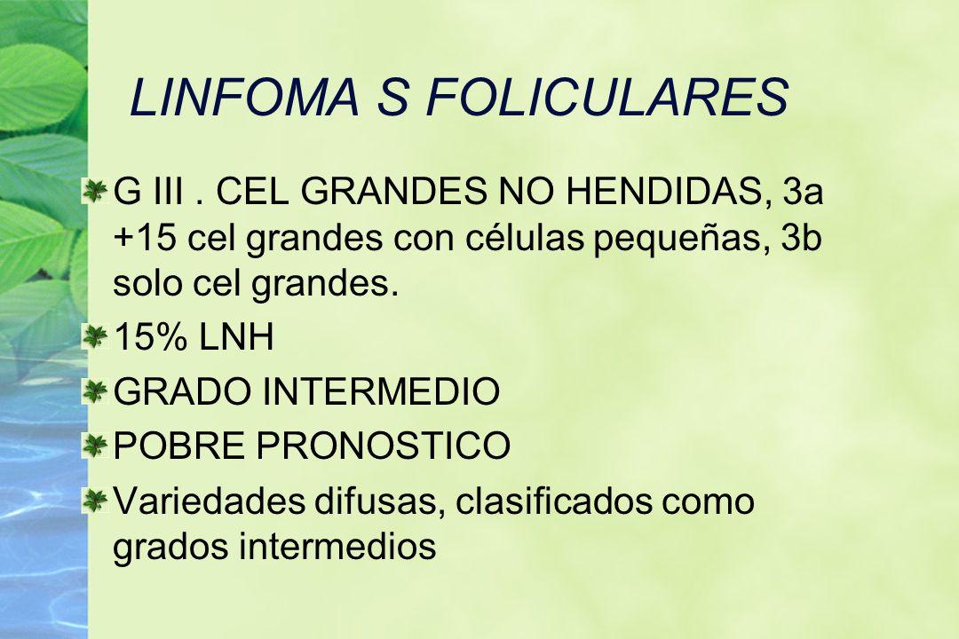 LINFOMA S FOLICULARES G III. CEL GRANDES NO HENDIDAS, 3a +15 cel grandes con células pequeñas, 3b solo cel grandes. 15% LNH GRADO INTERMEDIO POBRE PRO