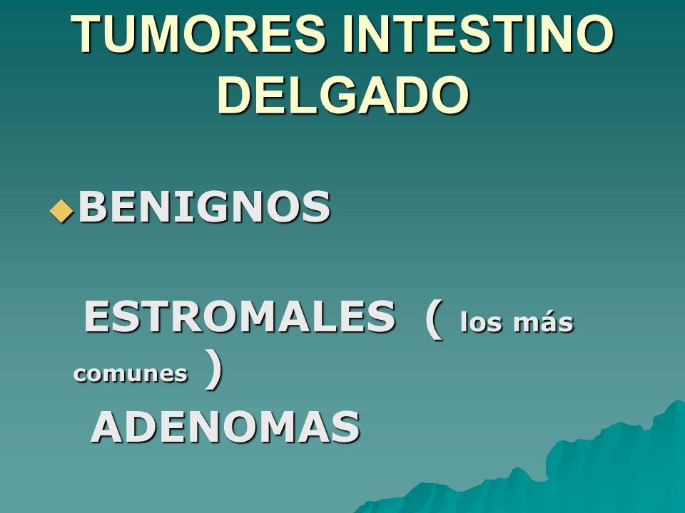 TUMORES INTESTINO DELGADO BENIGNOS BENIGNOS ESTROMALES ( los más comunes ) ESTROMALES ( los más comunes ) ADENOMAS ADENOMAS