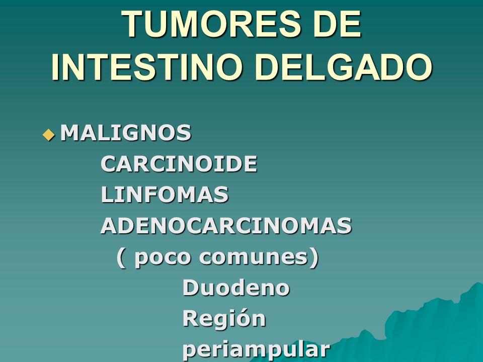 TUMORES DE INTESTINO DELGADO MALIGNOS MALIGNOS CARCINOIDE CARCINOIDE LINFOMAS LINFOMAS ADENOCARCINOMAS ADENOCARCINOMAS ( poco comunes) ( poco comunes)