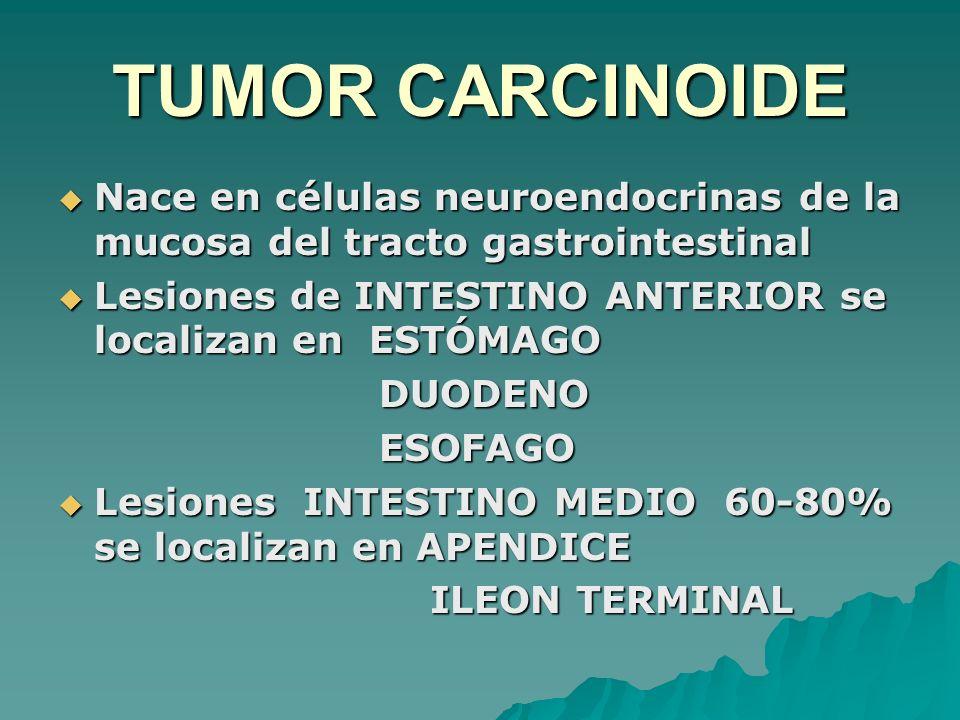 TUMOR CARCINOIDE Nace en células neuroendocrinas de la mucosa del tracto gastrointestinal Nace en células neuroendocrinas de la mucosa del tracto gast