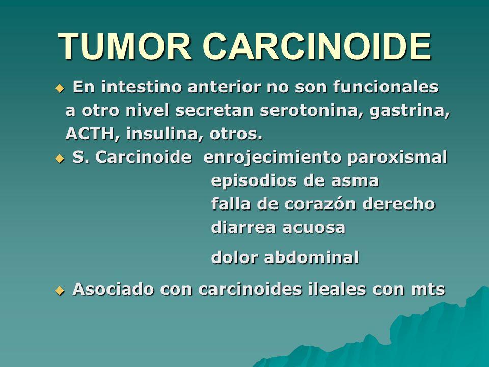 TUMOR CARCINOIDE En intestino anterior no son funcionales En intestino anterior no son funcionales a otro nivel secretan serotonina, gastrina, a otro