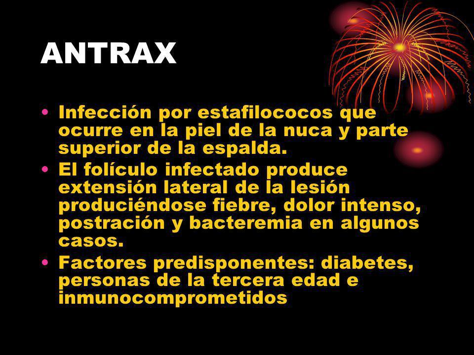 ANTRAX Infección por estafilococos que ocurre en la piel de la nuca y parte superior de la espalda. El folículo infectado produce extensión lateral de