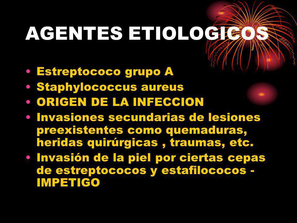 AGENTES ETIOLOGICOS Estreptococo grupo A Staphylococcus aureus ORIGEN DE LA INFECCION Invasiones secundarias de lesiones preexistentes como quemaduras