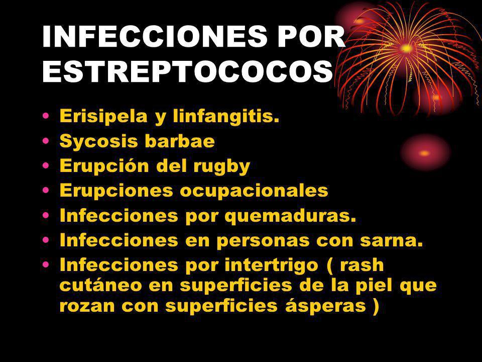 INFECCIONES POR ESTREPTOCOCOS Erisipela y linfangitis. Sycosis barbae Erupción del rugby Erupciones ocupacionales Infecciones por quemaduras. Infeccio