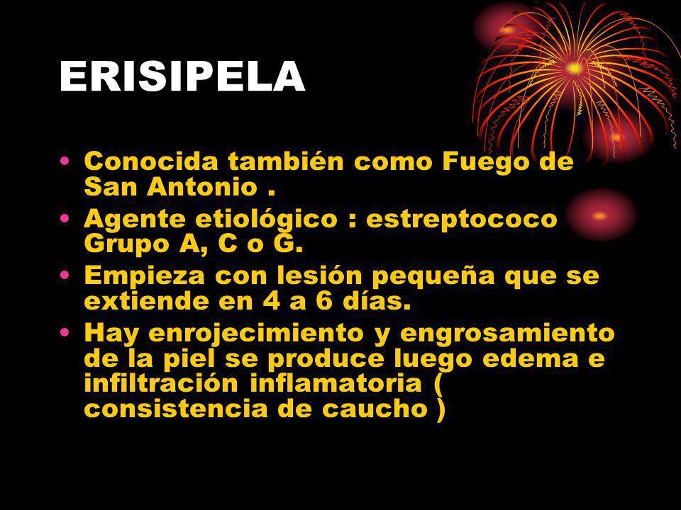 ERISIPELA Conocida también como Fuego de San Antonio. Agente etiológico : estreptococo Grupo A, C o G. Empieza con lesión pequeña que se extiende en 4