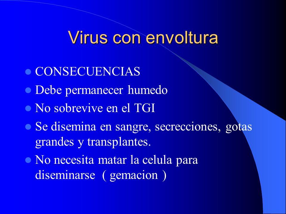 Virus con envoltura CONSECUENCIAS Debe permanecer humedo No sobrevive en el TGI Se disemina en sangre, secrecciones, gotas grandes y transplantes. No
